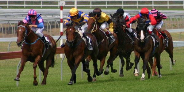 Muswellbrook Race Club