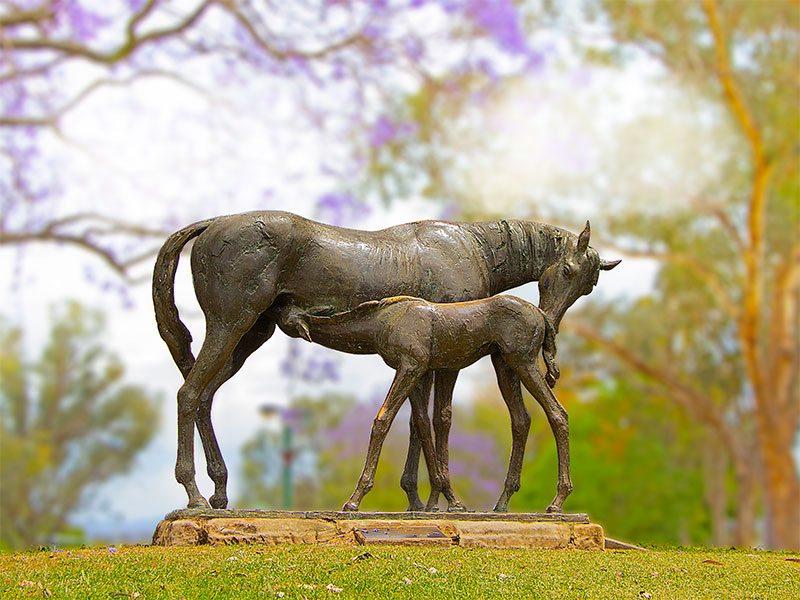 the iconic Mare & Foal sculpture in Elizabeth Park
