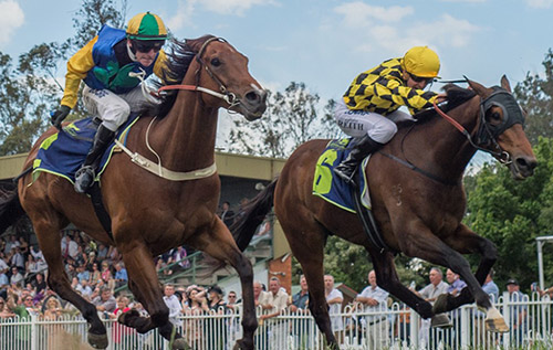 Muswellbrook-race-day